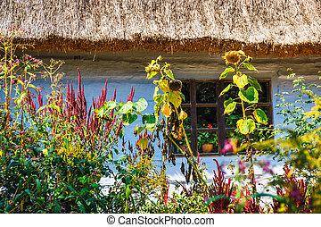 viejo, registro, casa, con, azotea cubierta con paja, tradicional, rural, arquitectura, en, polonia