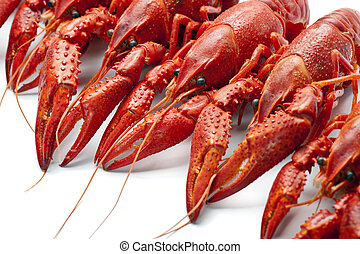viele, crayfish, rotes