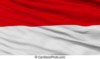 Vienna City Close Up Waving Flag - Vienna Capital City Flag...