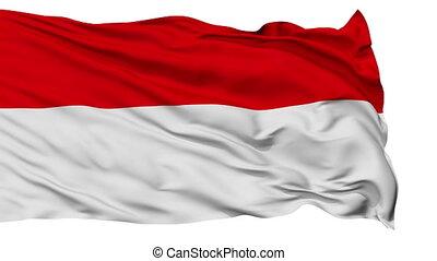 Vienna City Isolated Waving Flag - Vienna Capital City Flag...