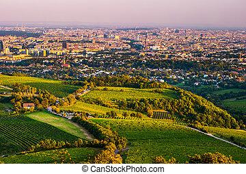 Vienna skyline and Danube River. Vienna, Austria. -...