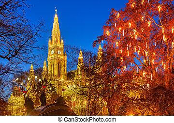 Vienna town hall and park - Vienna Town Hall and park...