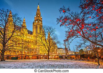Vienna town hall - Vienna Town Hall at dusk