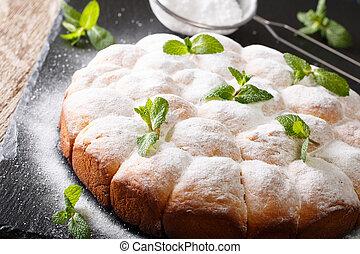 Viennese buns buchteln with powdered sugar close-up....