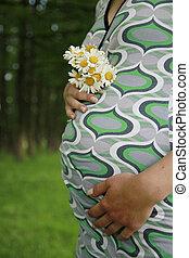 vientre, de, un, joven, embarazada, niña, en, el, naturaleza