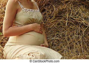 vientre, hermoso, joven, embarazada, niña, en, naturaleza