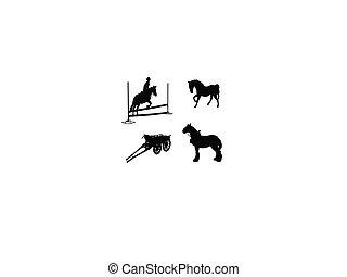 vier, eins, seite, pferdeartig