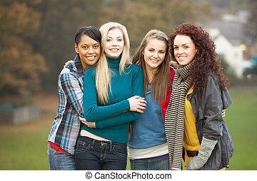vier, Jugendlich, Gruppe, mädels, Herbst, landschaftsbild