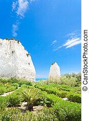 vieste, italien, -, vegetation, an, der, tafelkreide, steinen, von, vieste