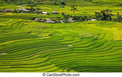 beautiful pictures of nature in Vietnam