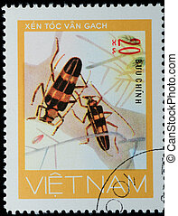 VIETNAM - CIRCA 1980s: A stamp printed in Vietnam shows animal insect long horn beetle bug, circa 1980s