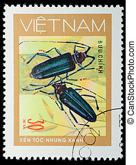 VIETNAM - CIRCA 1980s:  stamp - animal insect long horn beetle