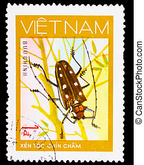 VIETNAM - CIRCA 1981: A stamp printed in VIETNAM, shows animal insect long horn beetle bug, 1 coins, circa 1981