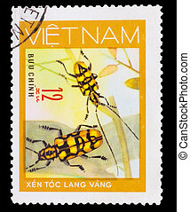 VIETNAM - CIRCA 1981: A stamp printed in VIETNAM, shows animal insect long horn beetle bug, 12 coins, circa 1981
