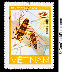 VIETNAM - CIRCA 1981: A stamp printed in VIETNAM, shows animal insect long horn beetle bug, 20 coins, circa 1981