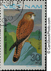 VIETNAM - CIRCA 1982:  stamp - animal bird eagle