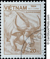 VIETNAM - CIRCA 1984:  stamp - wild animal water buffalo