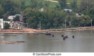 tourists are transported by elephants - Vietnam, Daklak...