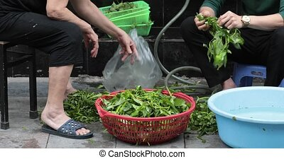 Two people take fresh grass from the market - VIETNAM HANOI...