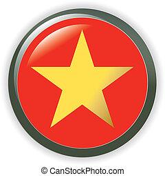 Vietnam, shiny button flag