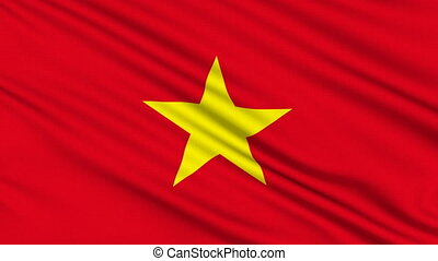 Vietnamese Flag, with real structure of a fabric