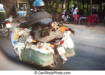 Vietnamese man on motorcycle - Unrecognizable vietnamese man...