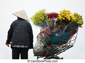 vietnamese woman and selling flower bicycle in hanoi city isolated white background