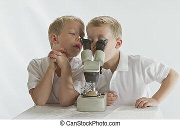 vieux, étudier, années, regarder, microscope, jumeaux, 6, par