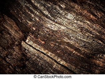 vieux, bois, chêne, texture.
