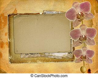 vieux, carte postale, pour, félicitation, ou, invitation, à, a, branche, de, rose, orchidées