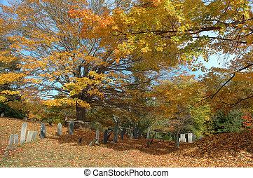 vieux, cimetière, dans, octobre