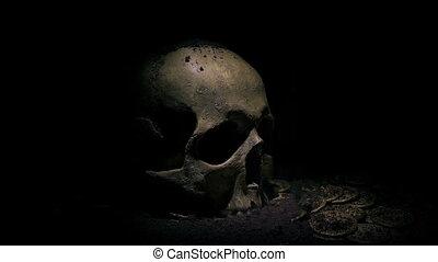 vieux, crâne, sol, pièces, haut, creusé, sous