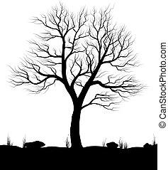 vieux, illustration., sur, arbre, arrière-plan., vecteur, noir, blanc, herbe, paysage