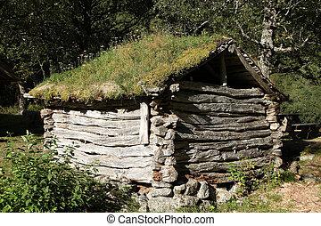 vieux, maison bois, dans, norvège