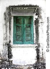 vieux, mur, fenêtre, vert, boisé, moisi
