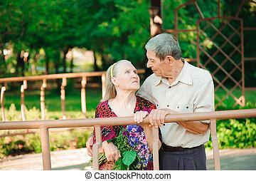 vieux, parc, couple, ensoleillé, day., embrasser, baiser