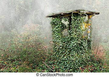 vieux, puits, maison