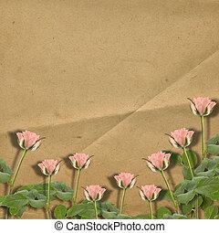 vieux, roses, vendange, carte postale, félicitation