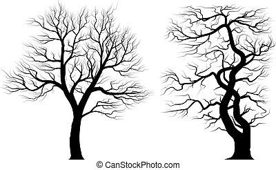 vieux, sur, arbres, arrière-plan., silhouettes, blanc
