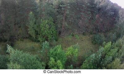 view., антенна, лес, пейзаж