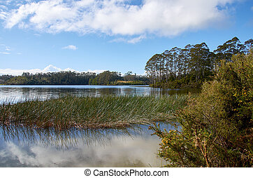 View across the placid lake Manuwai in Northland , New Zealand against a backdrop of trees and a blue sky filled with clouds