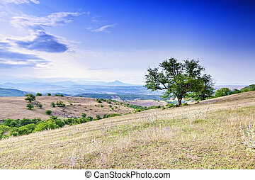 View at Caucasus foothills
