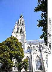 View at large cathedral of Our Lady in Breda, The Netherlands
