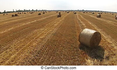 View from a bird's eye view on a field with stacked bales of wheat