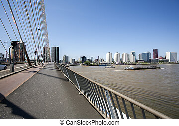 View from a bridge in Rotterdam