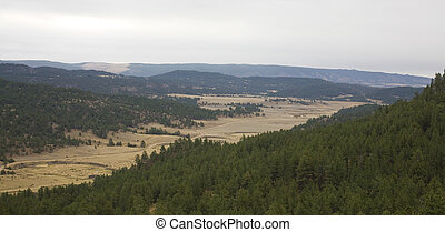 Black Hills - view from a vista in the Black Hills of South...