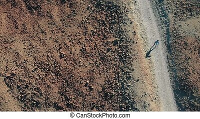 View from above. A woman runs along the path in the mountains, around the volcanic sand and frozen lava