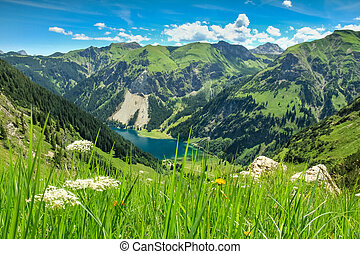 View from alpine meadow to lake and mountains. spring summer