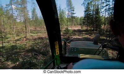 View from cabine of Feller Buncher - Feller Buncher loaded...
