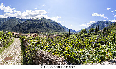 View from castle of Avio to town Sabbinoara and valley Etschtal in Italy, Europe